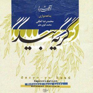 آلبوم گریه ی بید | بداهه نوازی محمد رضا لطفی و محمد قوی حلم