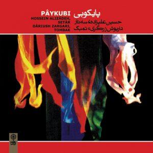 آلبوم پایکوبی | حسین علیزاده سه تار و داریوش زرگری تمبک